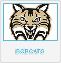 Bobcats Designs