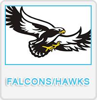 Falcons/Hawks Designs