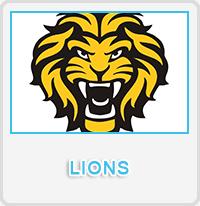 Lions Designs