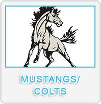 Mustangs/Colts Designs