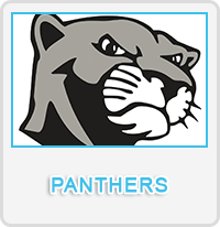 Panthers Designs