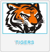 Tigers Designs