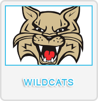Wildcats Designs